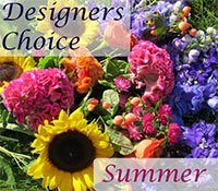 Designers Choice Summer